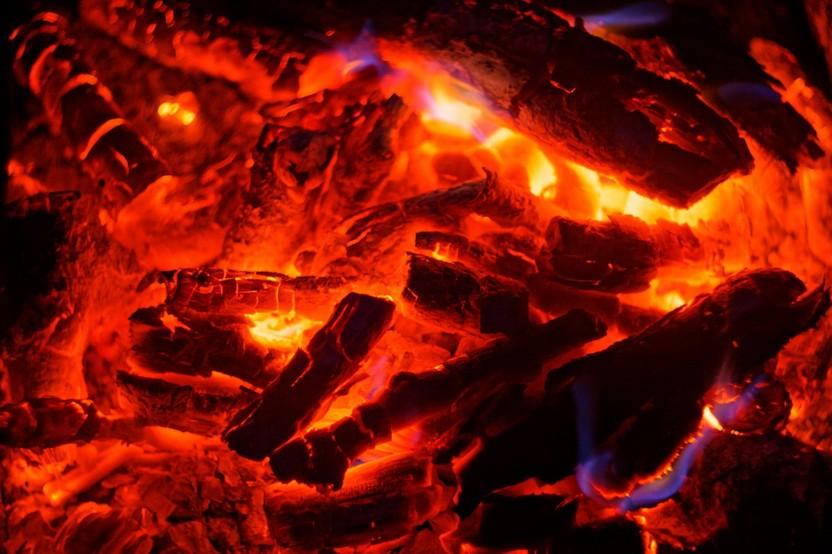 Coals Fire Tree Heat Night  - barmalyanich / Pixabay